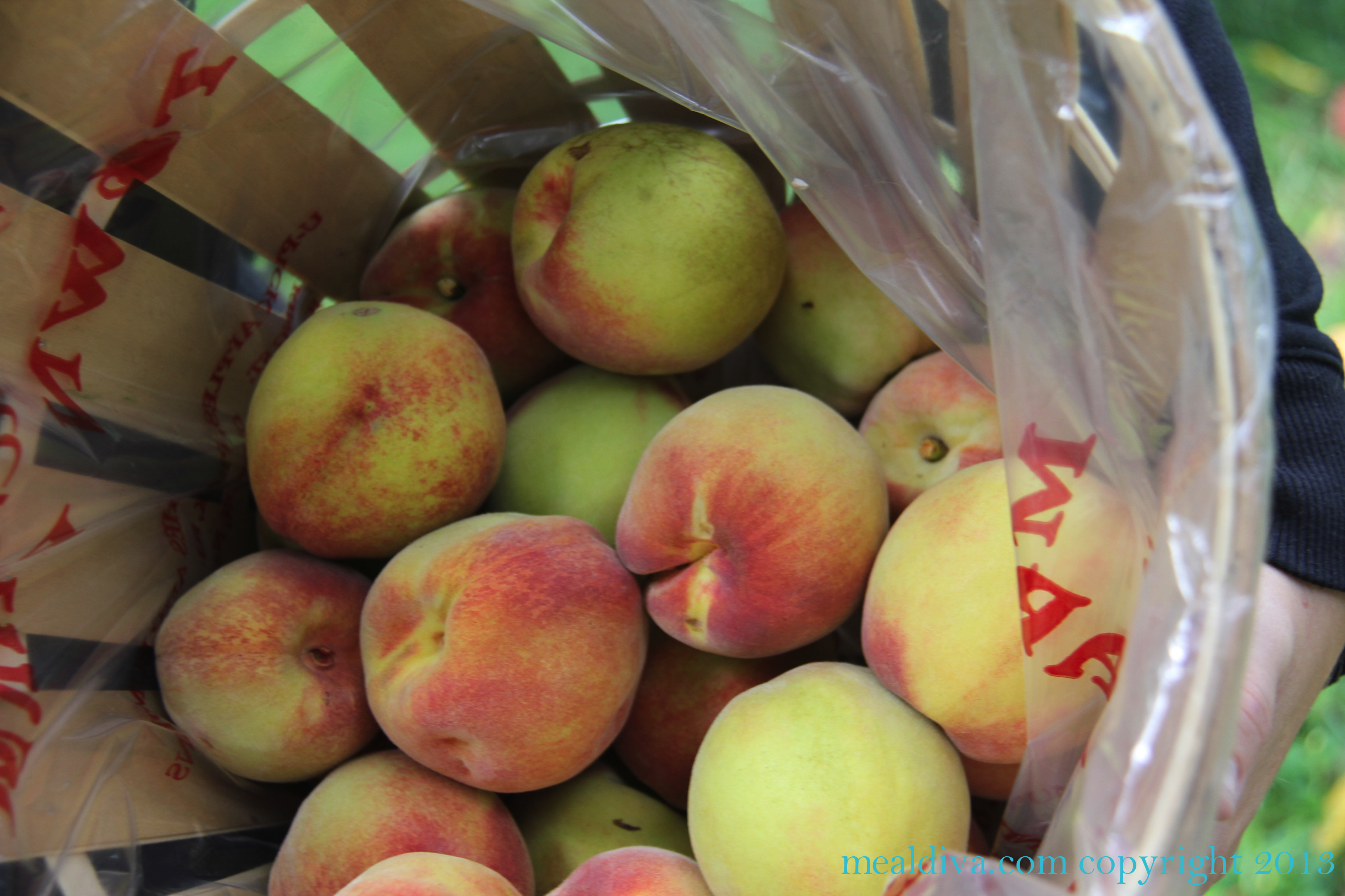 PYO Peaches at Melick's Town Farm with 3 GREAT recipe's