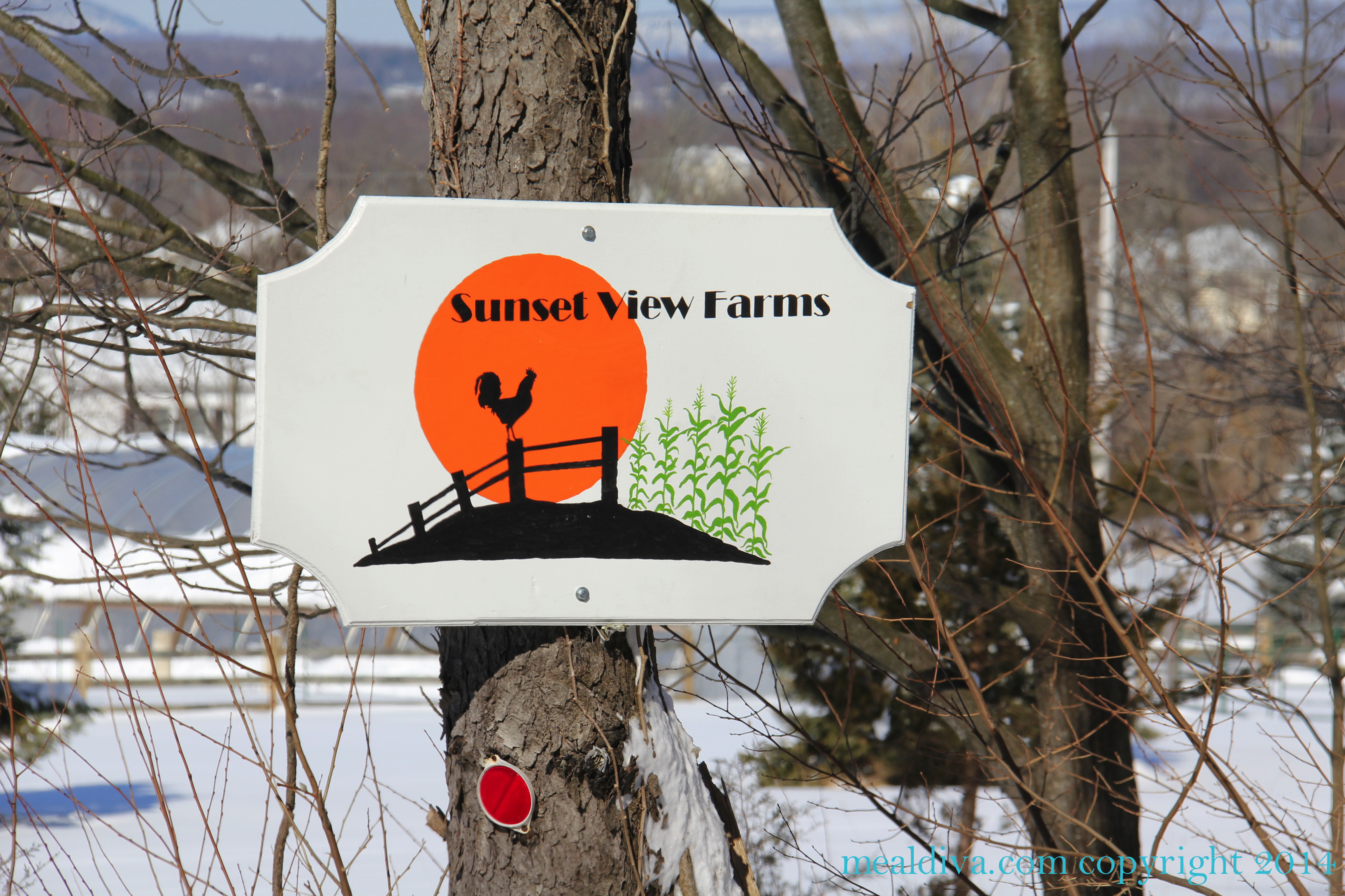 Become A Farmer at Sunset View Farms