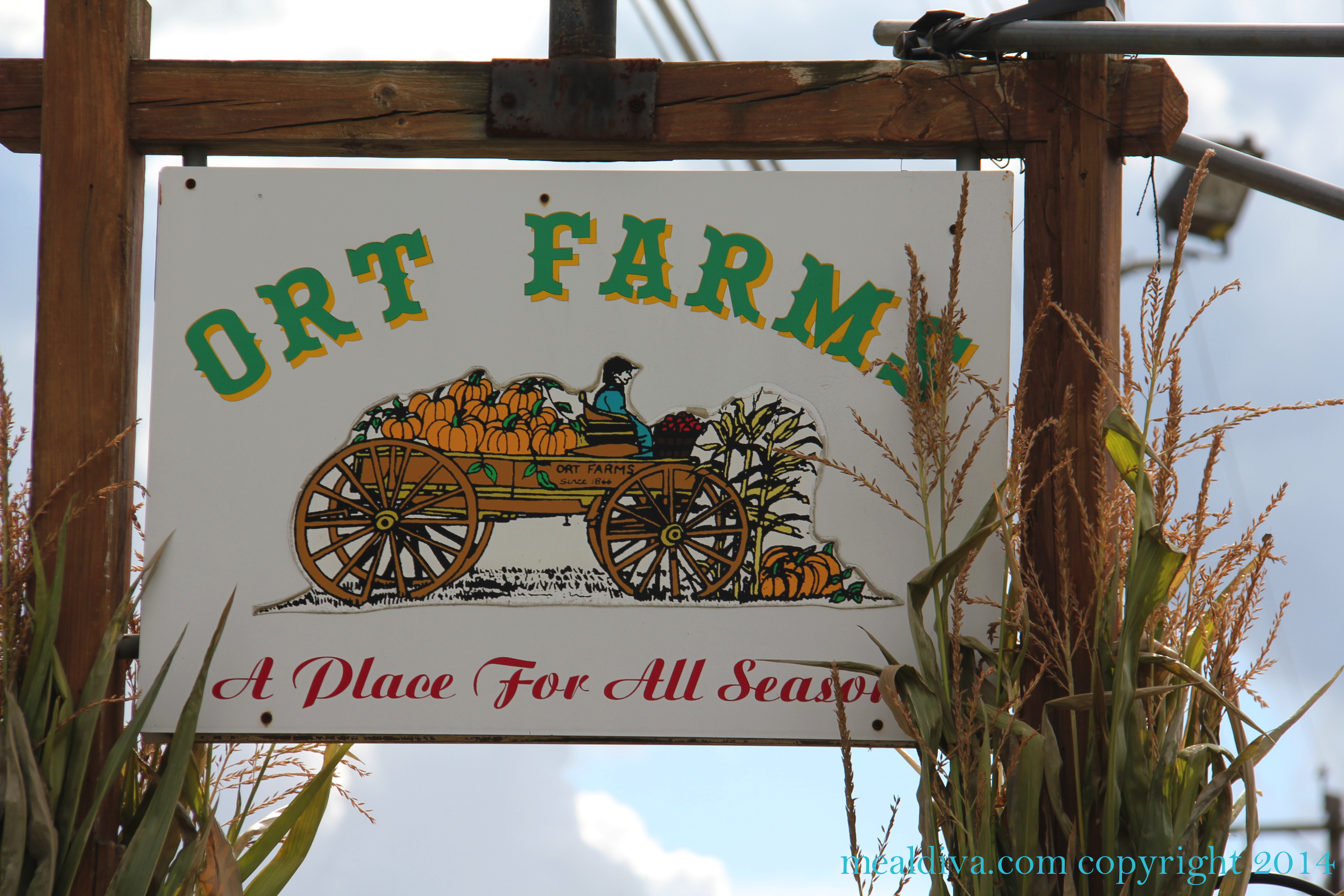 Ort Farms in Long Valley
